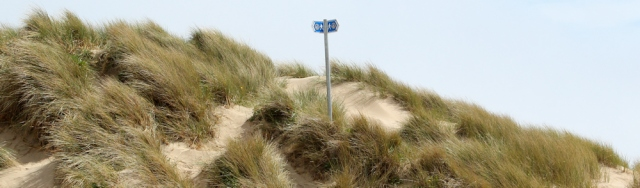 a18 Wales Coast Path sign in dunes, Ruth in Pembrey Country Park