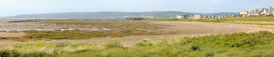 Seaside, Ruth Livingstone