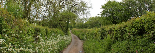 01 country lanes near Llangain, Ruth on the Wales Coast Path