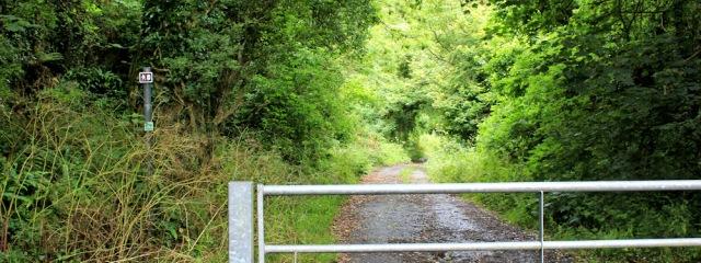 02 quarry path, Ruth walking the Wales Coast Path, Castlemartin Ranges