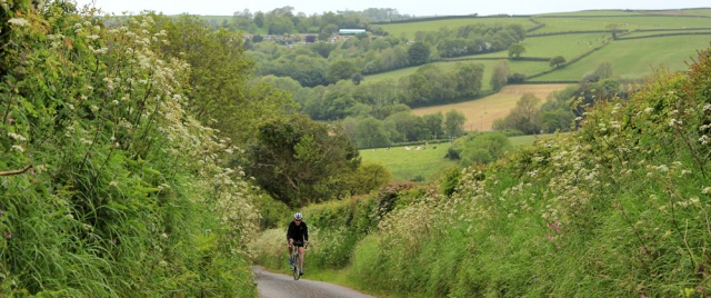 06 cyclist coming towards me, Ruth on Welsh coastal path