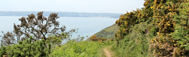 path around Marros Beacon, Ruth walking Wales Coast Path, towards Amroth