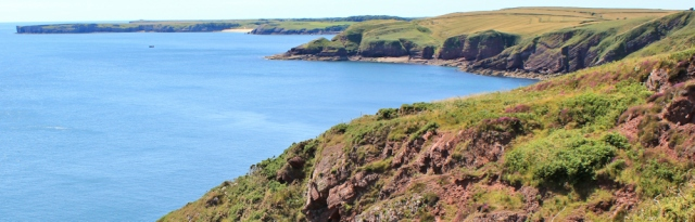 looking ahead to Stackpole Head, Ruth walking the Pembrokeshire Coast Path