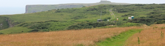 16 Pembrokeshire Coast Path, Trevallan Down, Ruth Livingstone