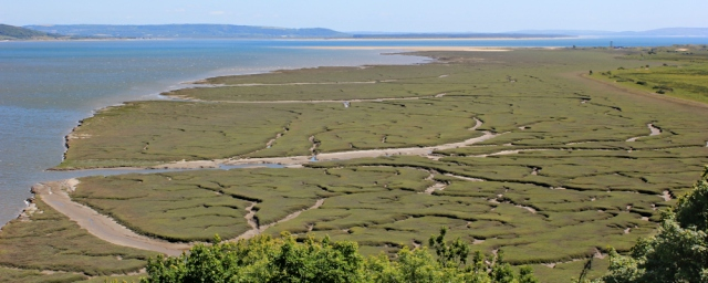 Laugharne marshes and Laugharne Sands, Ruth livingstone