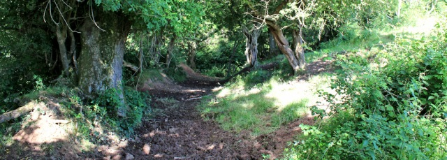 03 muddy path, Ruth on Pembrokeshire Coast Path
