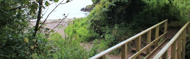04 rocky shore through trees, Castlebeach Bay, Ruth walking to St Ann's Head, Wales