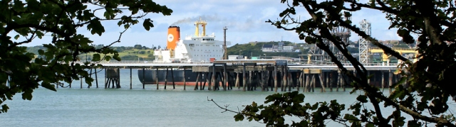 Big ships in Milford Haven, Ruth walking through woodland