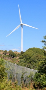 Wind Turbines, Milford Haven, Ruth Livingstone