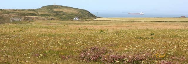 22 Martin's Haven, Ruth walking the Pembrokeshire Coast Path