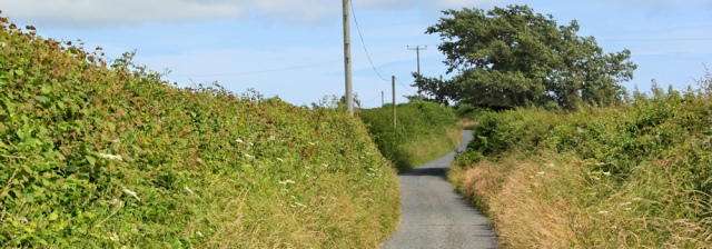 road walking to Hundleton, Ruth in Pembrokeshire