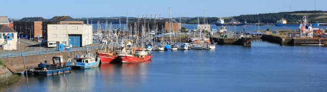 Marina, Milford Haven, Ruth Livingstone in Pembrokeshire
