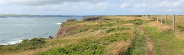 flat cliffs to West Angle Bay, Ruth walking the coast, Wales