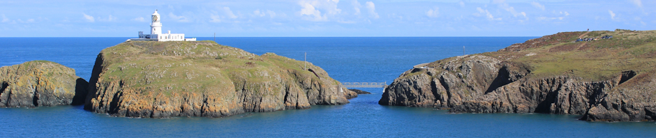 header, Strumble Head, Ruth Livingstone