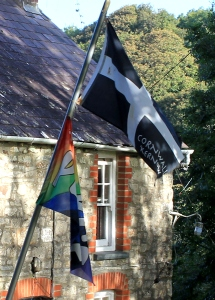 Cornish flag in Molygrove, Ruth's coastal walk