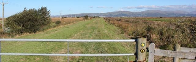 04 Ceredigion Coast Path, alongside Afon Leiri, Ruth Livingstone