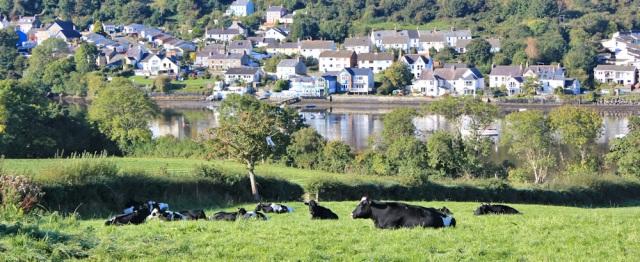 04 St Dogmaels over the estuary, Ruth's coastal walk
