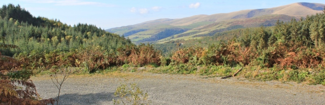 07 logging road, Ruth on the Wales Coast Path, Foel Goch