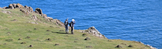 10 seal watchers, Pembrokeshire Coast, Ruth Livingstone