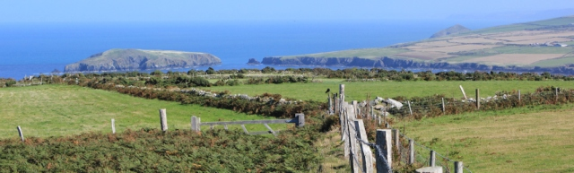 11 looking over Cemaes Head to Cardigan Island, Ruth Livingstone