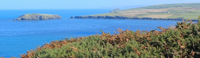 13 Cardigan Island, Ruth Livingstone in Pembrokeshire