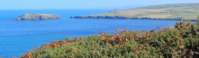 13 Cardigan Island, Ruth Livingstone in Pembrokeshire