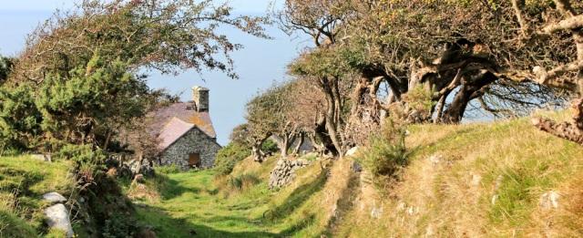 15 sunken lane and derelict farm, Ruth Livingstone