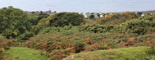 17 inland detour around caravan park, Ruth trekking to Aberyswith