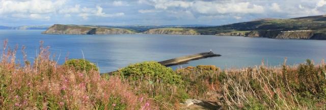 18 Dinas Head, Ruth walking in Wales