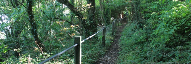 19 path down into Goodwick, Ruth's coastal walk, Wales
