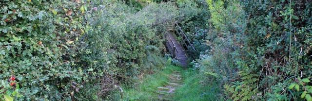 19 steep path towards Parcllyn, RUth's coast walking