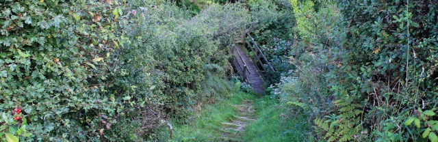 19 steep path towards Parcllyn, RUth's coast walking