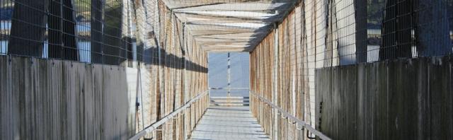 20 covered bridge, Ruth walking into Fishguard