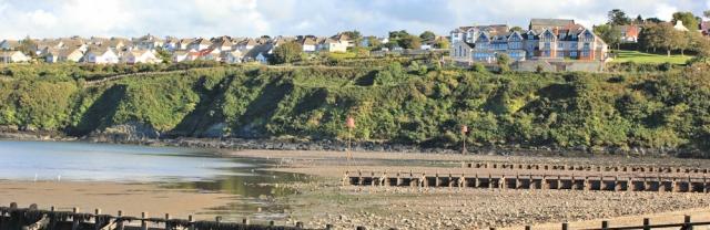 23 Fishguard, Ruth's coastal walk, Pembrokeshire