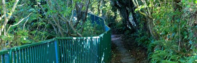 24 secret path into Cardigan