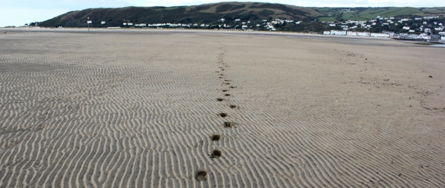 25 footsteps in soft sand, RUth at Ynyslas