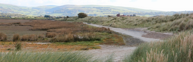 Ynyslas nature reserve, Ruth walkin up the Afon Dyfi estuary