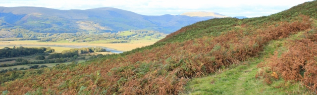 slopes of Foel Fawr, Ruth on the Wales Coast Path