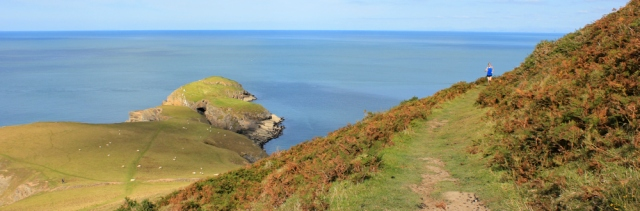 Ynys Lochtyn from the Ceredigion coastal path, Ruth's walk around Wales