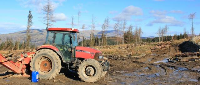 13 logging, Snowdonia, Ruth on the Wales Coastal Path