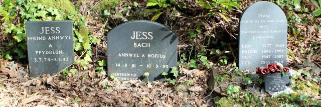 14 doggy graves, Portmeirion, Ruth's coastal walk
