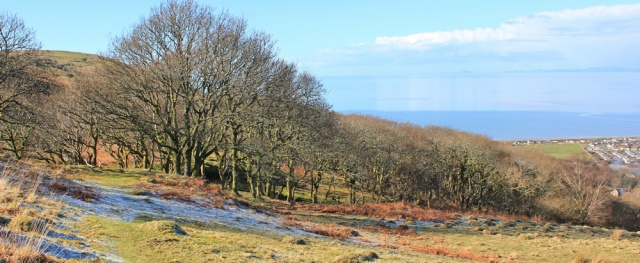 15 Wales Coast Path, going downhill towards Fairbourne