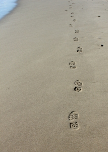 footsteps on sand, Ruth Livingstone