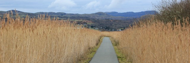 causeway over marshes, Ruth on the Wales Coast Path