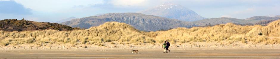 header, Black Rock Sands, Ruth Livingstone