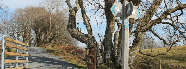 well sign-posted, Ruth hiking the Wales Coast Path