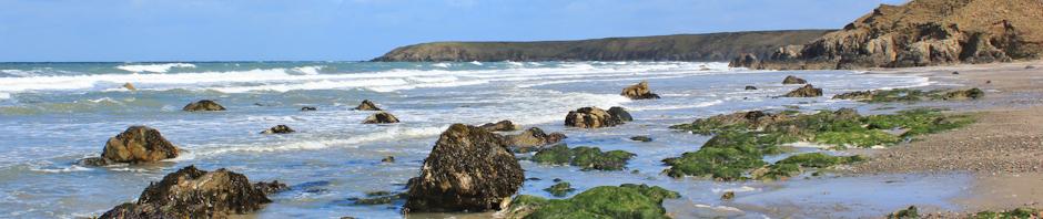 Header, Llyn peninsula, Ruth Livingstone
