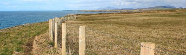 22 around Penrhyn Mawr, Ruth walking the Llyn Coast Path