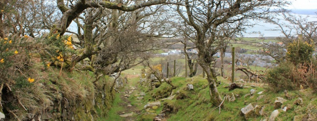 27 sunken lane to Trefor, Ruth Livingstone hiking the Llyn Coast path