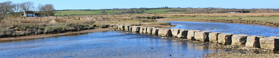 Header, giant stepping stones, Ruth Livingstone